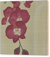 Pink Orchide In A Vase Wood Print