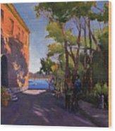 Pink Palazzo Wood Print