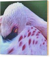 Pink Passion Wood Print
