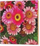Pink Patterned Mums Wood Print
