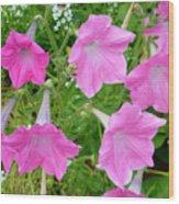 Pink Petunia Flower 9 Wood Print