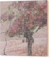 Pink Plaster Wood Print