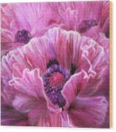Pink Poppy Splash Wood Print