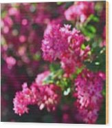 Pink Profusion 1 Wood Print