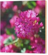 Pink Profusion 2 Wood Print