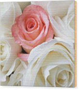 Pink Rose Among White Roses Wood Print by Garry Gay
