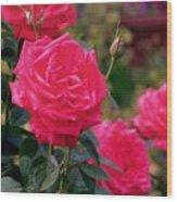 Pink Rose And Bud Wood Print
