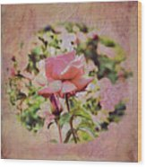 Pink Rose Doily Wood Print