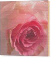 Pink Rose Fantasy 3 Wood Print