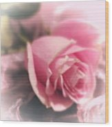 Pink Rose Macro Abstract 1 Wood Print