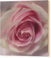 Pink Rose Macro Abstract Wood Print