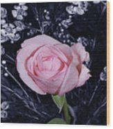 Pink Rose Of Imperfection Wood Print