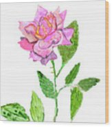 Pink Rose, Painting Wood Print