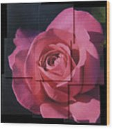 Pink Rose Photo Sculpture Wood Print