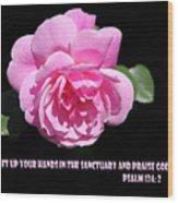 Pink Rose Psalm 134 Vs 2 Wood Print