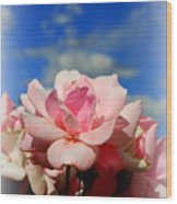 Pink Roses Against The Beautiful Arizona Sky Wood Print