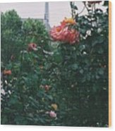 Pink Roses And The Eiffel Tower Wood Print