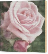Pink Roses In Anzures 2 Nostalgic Wood Print