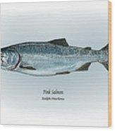 Pink Salmon Wood Print by Ralph Martens
