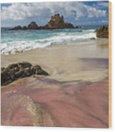 Pink Sand Beach In Big Sur Wood Print