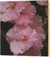 Pink Slippers Wood Print