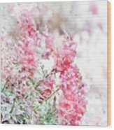 Pink Snapdragons Watercolor Wood Print