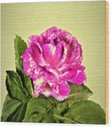 Pink Speckled Rose 1 Wood Print