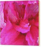 Pink Splash Wood Print by Kristin Elmquist