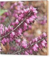 Pink Spray Of Flowers Wood Print