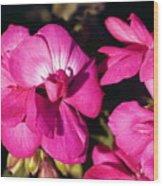 Pink Spring Florals Wood Print