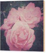 Pink Summer Roses Wood Print