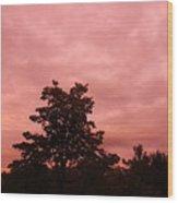 Pink Sunset Wood Print