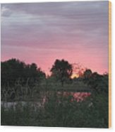 Pink Sunset With Green Riverbank Wood Print