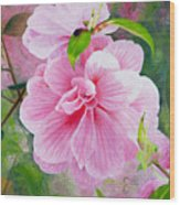 Pink Swirl Garden Wood Print by Shelley Irish
