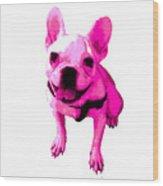 Pink Terrier Wood Print