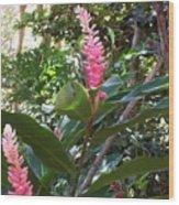 Pink Tropical Flowers Wood Print
