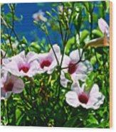 Pink Trumpet Flowers In Pilgrim Place In Claremont-california Wood Print