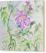 Pink Trumpet Vine Wood Print