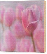 Pink Tulip Crowd Wood Print