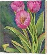 Pink Tulip Twist Wood Print