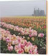 Pink Tulips And Tractor Wood Print