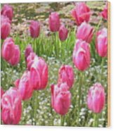Pink Tulips By Peaceful Pond Wood Print