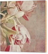 Pink Tulips On Checkers Wood Print