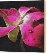 Pink Velvet Wood Print