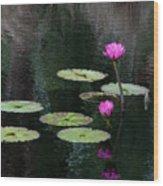 Pink Waterlillies Wood Print