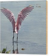 Pink Wings Wood Print