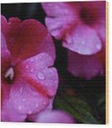 Pink Wonders Wood Print
