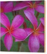 Pinkalicious Wood Print