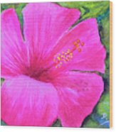 Pinkhawaii Hibiscus #505 Wood Print