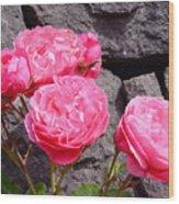 Pinks On The Rocks Wood Print